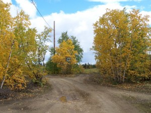 Huslia in the fall time