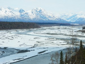 Denali South View area along the Parks Highway by Angela Gonzalez