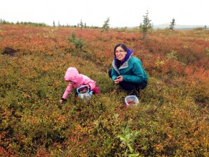 Agatha Erickson picking cranberries with her niece in Fairbanks. Courtesy photo